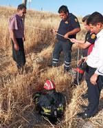 Besni'de kuyuya düşen keçiyi itfaiye kurtardı