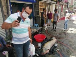 Edirne'de gölette 2 metrelik yayın balığı yakalandı