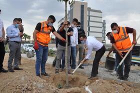 Cizre'de 15 Temmuz şehitler anısına fidan toprakla buluştu