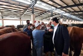 Osmangazi'deki modern tesiste kurbanlık satışları başladı