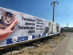 Sivas Belediyesi'nin hayvan hakları duyarlılığı
