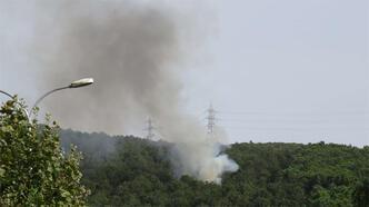Son dakika... Aydos Ormanın'dan dumanlar yükseliyor