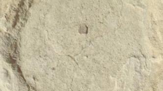 Suudi Arabistanda 120 bin yıllık ayak izi keşfedildi