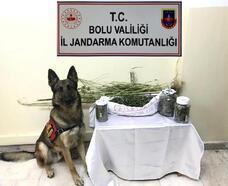 Jandarmadan uyuşturucu operasyonu: 8 gözaltı