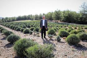 Başkan Gürün tarımı işaret etti