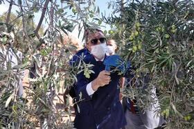 Kaymakam Aytemür'dan zeytin üreticilerine ziyaret
