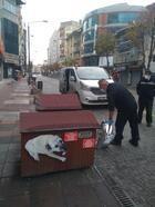 Odunpazarı Belediyesi sokakta yaşayan hayvanları unutmadı