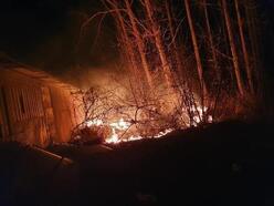 Akyazı'da kavak bahçesi yandı