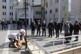 Şanlıurfa'da polis kaza ve beladan korunmak için kan akıttı