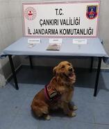 Çankırı'da uyuşturucuya 4 gözaltı
