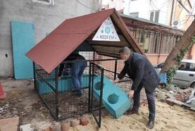 Süleymanpaşa Belediyesi'nin 'Kedi Oteli' hizmete girdi