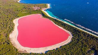 Sen hiç pembe göl gördün mü?
