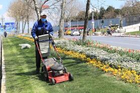 Sultangazi'de yeşillendirme çalışmaları sürüyor
