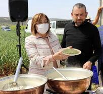 Gaziantep'te yeşil sarımsak hasadı başladı