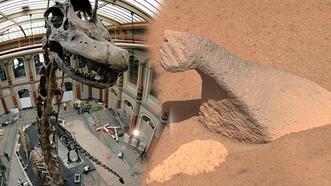 NASA'nın Mars aracının keşfettiği ilginç kayalar!