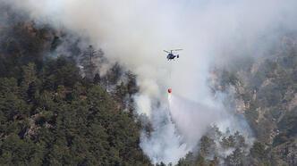 Denizli'de korkutan orman yangını!