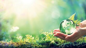 İklim için bireysel çözümler