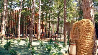 İğneada'da lezzet ormanı