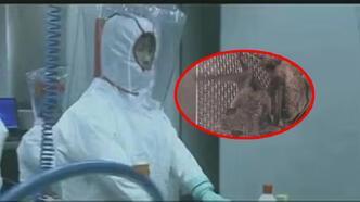 Son dakika: Yeni görüntüler ortaya çıktı ve kanıtlandı! DSÖ müfettişinin yalanı...
