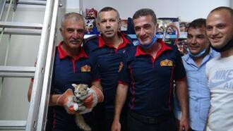 Havalandırma boşluğuna giren kediyi itfaiye kurtardı