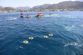 Şehitler anısına denize çelenk bıraktılar