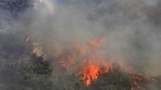 Lübnan'da yangınlarda 20 bin dekarlık alan kül oldu