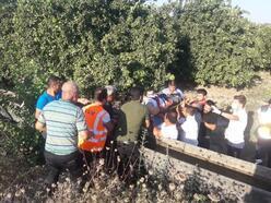 Kozan'da trafik kazası: 6 yaralı