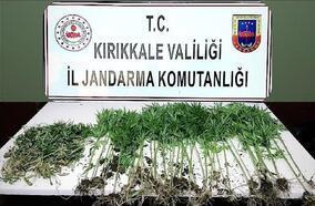 Kırıkkale'de uyuşturucu operasyonu: 1 gözaltı