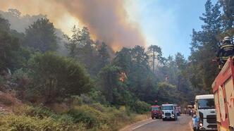 Son dakika... Muğla'daki yangın nedeniyle 4 yerleşim yeri tahliye edildi!