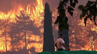 AK Partili İstanbul ilçe belediyelerinden orman yangınlarıyla mücadeleye destek