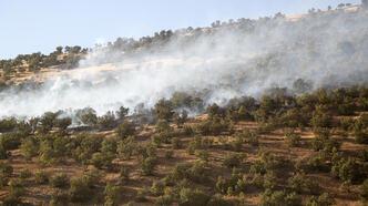 İran'daki yangında 200 hektar ormanlık alan zarar gördü