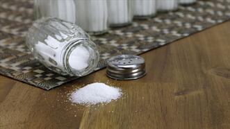 Avusturyalı Salinen Group'tan Türkiye'de tuz yatırımı