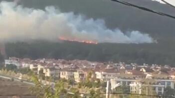 Son dakika | Pendik'te korkutan orman yangını