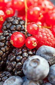 Dünyadaki en sağlıklı 50 yiyecek