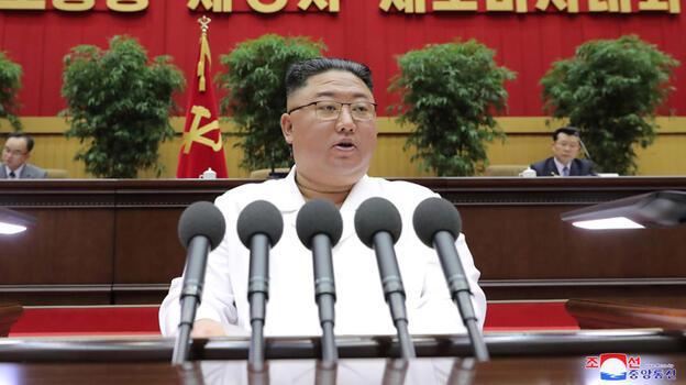Japonya ABD'den Kuzey Kore yardımı isteyecek