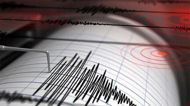 Japonya'nın Kagoşima eyaleti açıklarındaki deprem