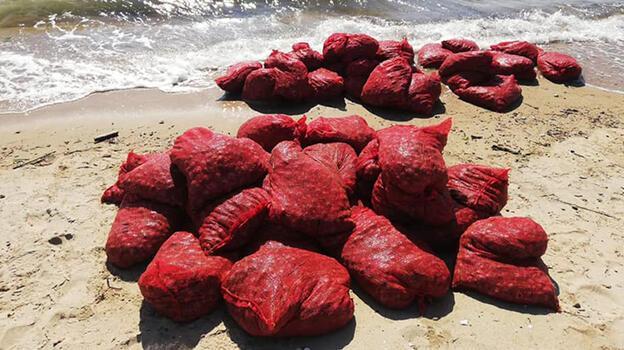 Edirne'de 876 kilo kaçak midyeye 449 bin lira ceza kesildi!