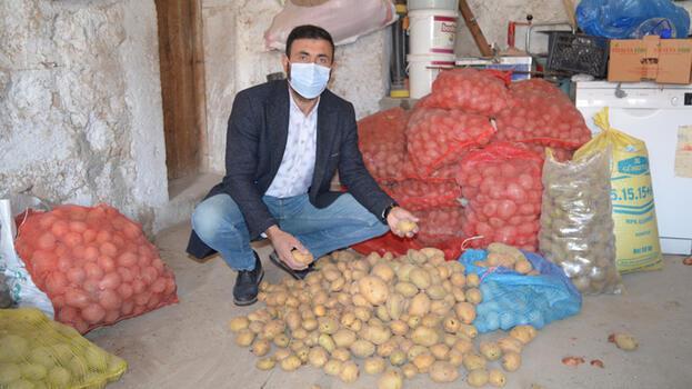 TMO'nun patates alımı Aksaraylı çiftçilerin yüzünü güldürdü