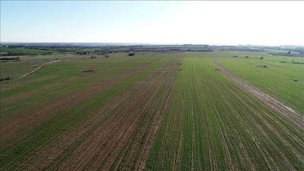Satılık tarım arazisi