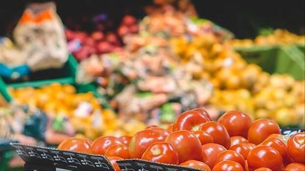 TGDF, 'tarımın finansmanını' gözlemliyor