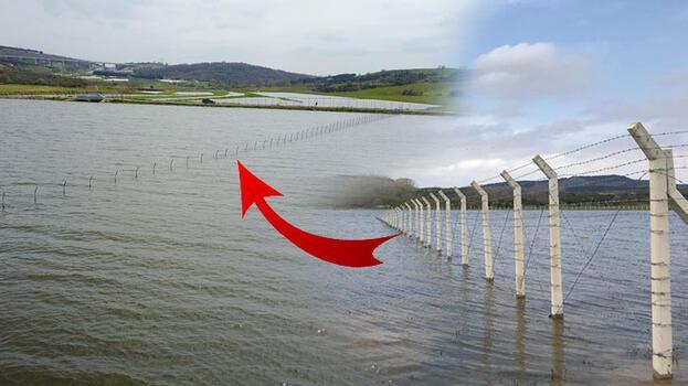 Ömerli Barajı'na çekilen tellere tepki; canlılara zarar veriyor