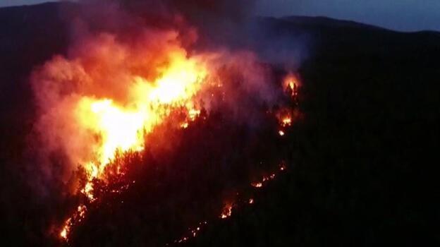 Muğla'daki orman yangınlarında 'sabotaj' şüphesi