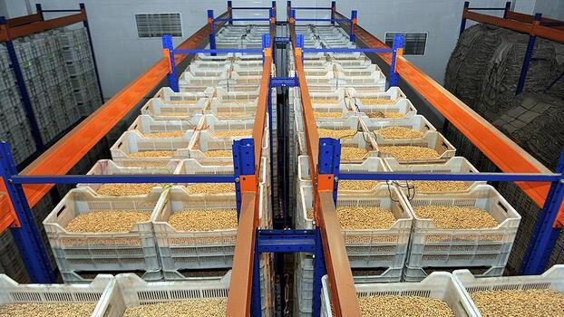 Ege'den hububat, bakliyat ve yağlı tohum ihracatında 550 milyon dolar hedefi