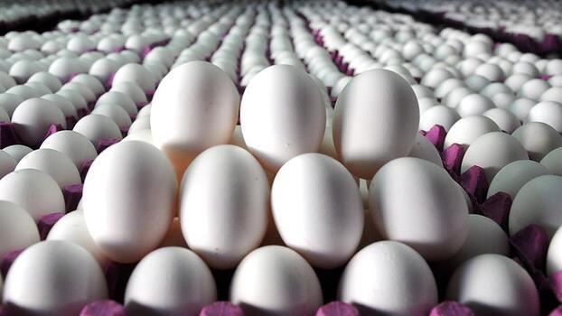 Yumurtaya zam gelecek mi? YUM-BİR'den önemli açıklama