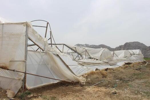 Büyükşehir Kozağacı'nda zarar gören seraları onaracak