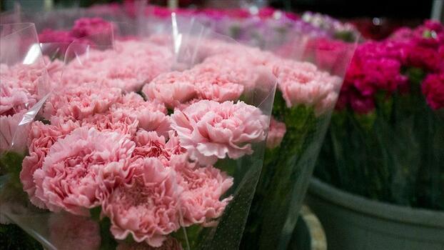 """Çiçek sektörü ihracatında """"Anneler Günü"""" bereketi yaşanıyor"""