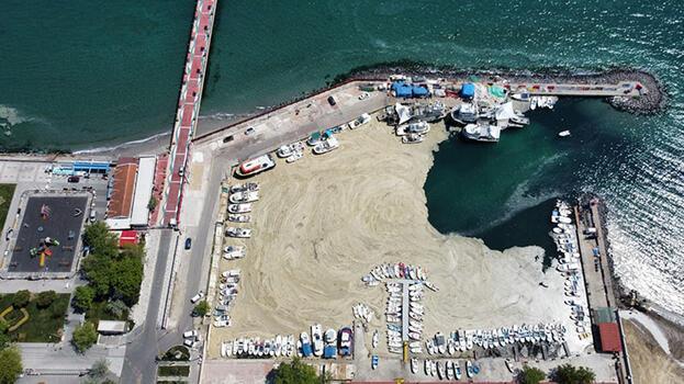 Tekirdağ'da deniz salyası nedeniyle balıkçılar denize açılamıyor