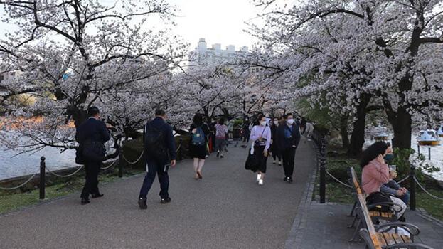 Japonya'da Kovid-19 nedeniyle uygulanan OHAL  31 Mayıs'a kadar uzatıldı