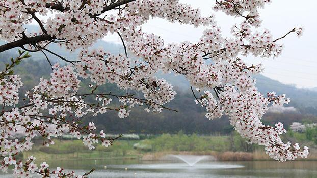 Bir şiir: Dört Mevsim