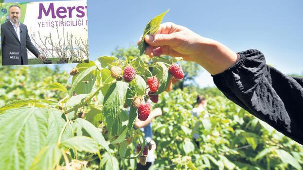 Tarım ekonomisine 250 milyon TL katkı